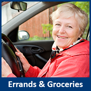 errands, outings, groceries toronto north york
